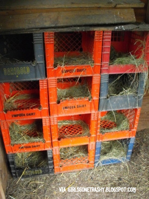 Nesting Boxes for chickens