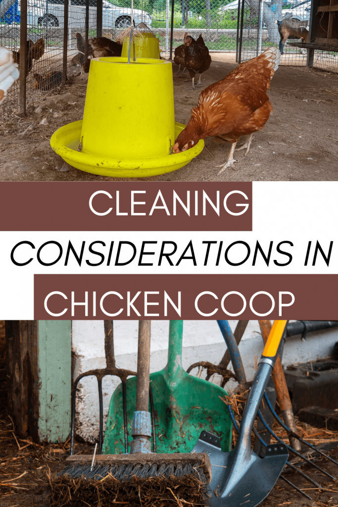 You would, unfortunately, realize that chickens would make a lot of mess, and it is on you to be able to clean them and ensure that they would be healthy.
